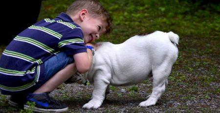 Niño autista le cuentos a perros