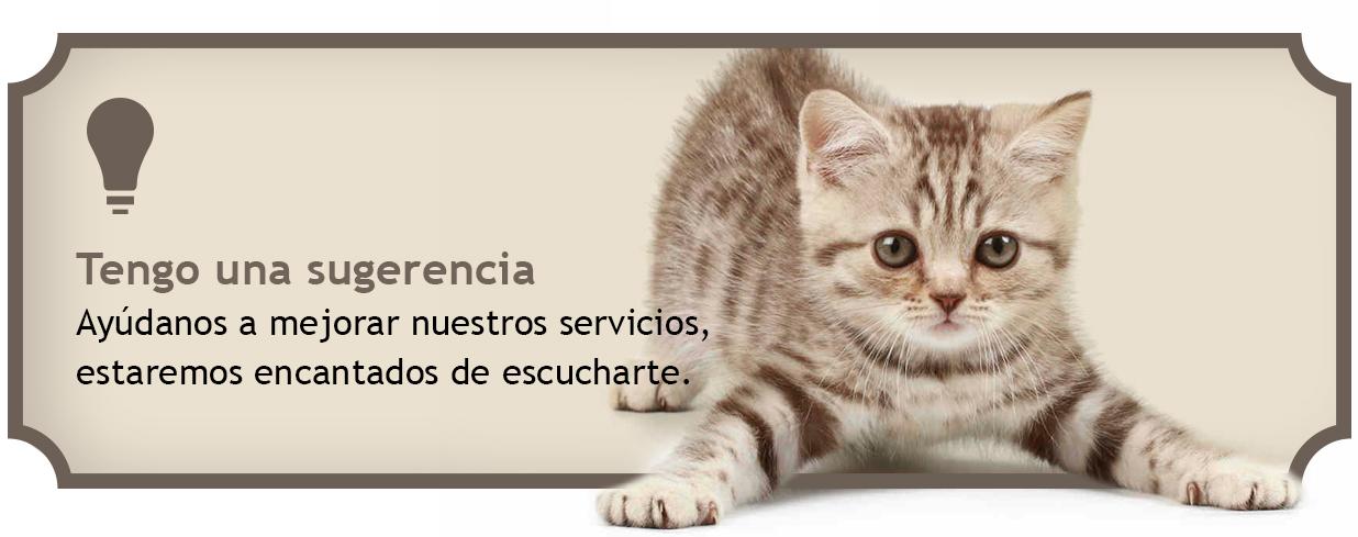 Envía una sugerencia sobre tiendas de animales
