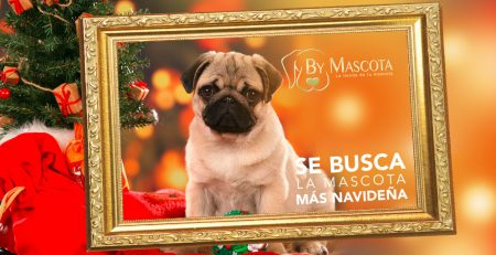 ByMascota de Navidad de Franquicias tiendas animales