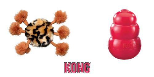 kong-premio-halloween