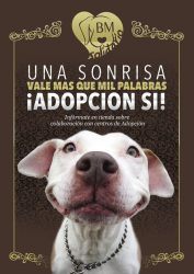 Adopcion-perros-gatos-by-mascota