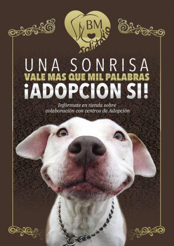 Adopcion-perros-gatos-by-mascota