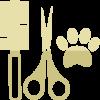practicas-diarias-icon