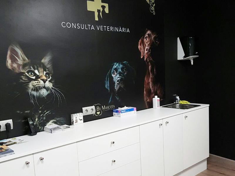 Veterinarias en Lleida