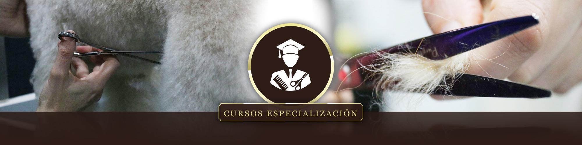Curso Especialización Peluquería Canina